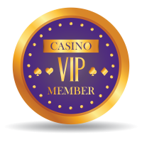 Spin Palace offers you a VIP program